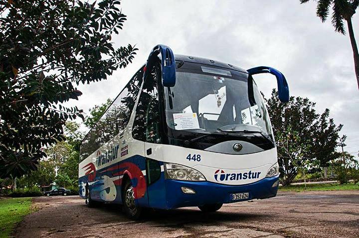 bus transtur