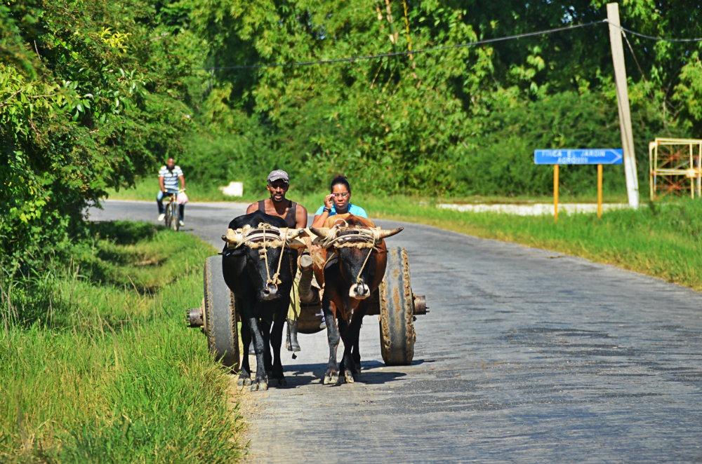 Transport Viñales 2