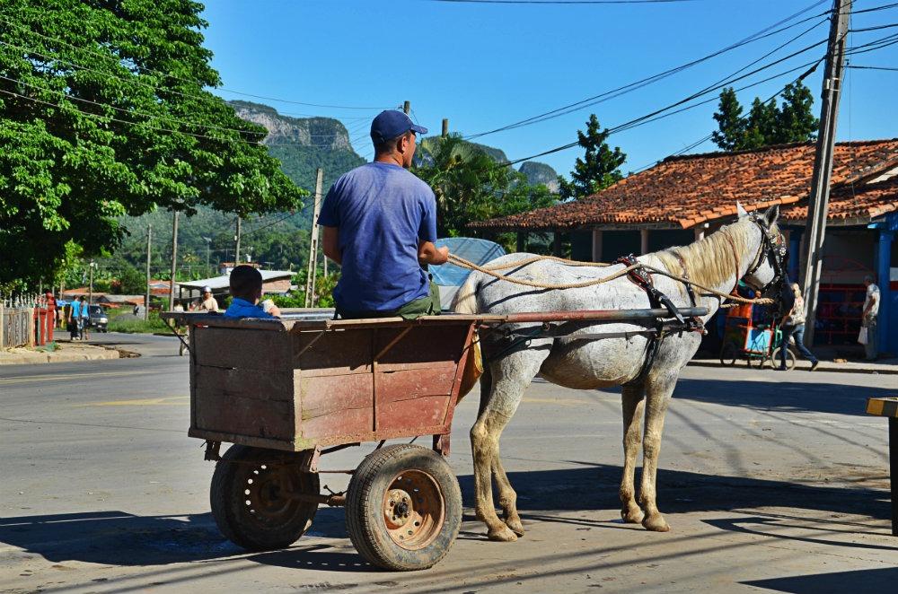 Transport Viñales