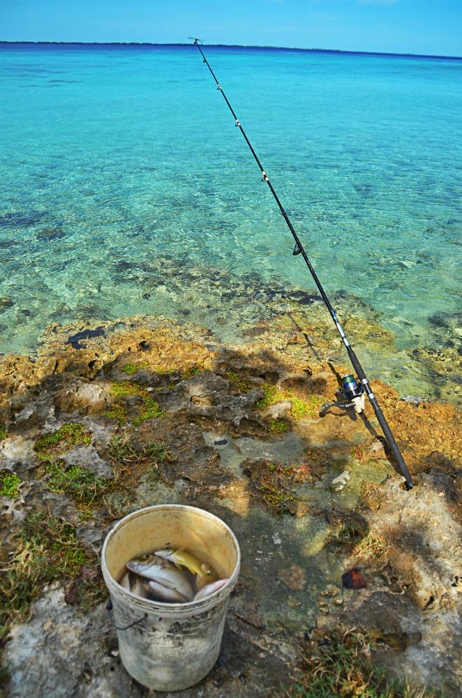 photo pêche 2