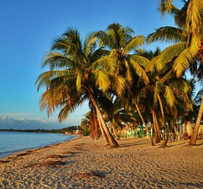 Les 5 secrets d'Eduardo, biologiste cubain, sur la péninsule de Zapata
